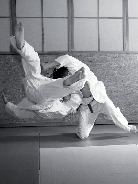 karate-vignette
